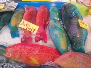 カラフルな魚売り場