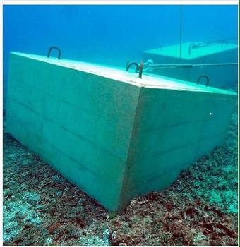 海底のサンゴ礁にのめり込む20トンブロック