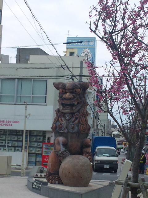 撮影は2週間ほど前、この桜もすでに葉桜に…。